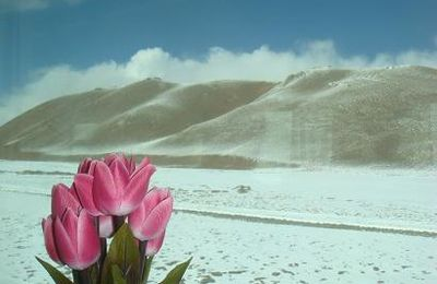 Le Tibet, depuis le Népal