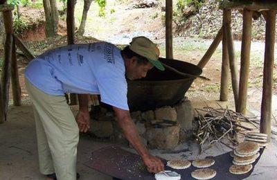 "galette de manioc ""cassave"""
