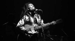 tribute to bob marley - playlist d'hommages et reprises