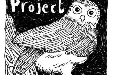 The Hoot Project