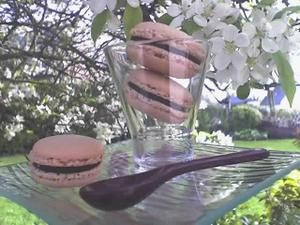 Macarons Chocolat - Fruits Rouges