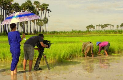 Shooting in the rice fields