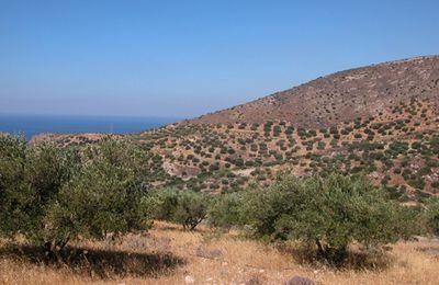 Pour approfondir sur la Méditerranée