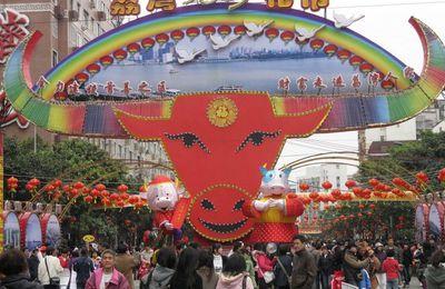 Marché aux fleurs chinois -2009 (7)