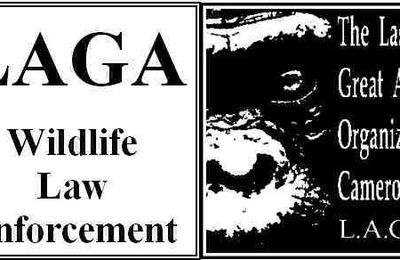 LAGA, Last Great Apes Organization in Cameroun