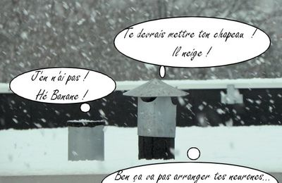 Douceur angevine...2
