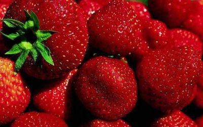 Les fraises au Moyen âge.