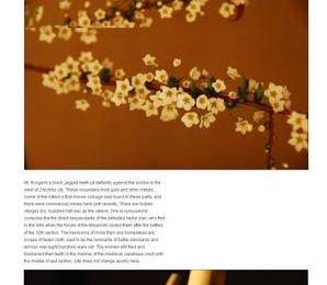 Hiking in Japan - blogs pour la randonnée au Japon