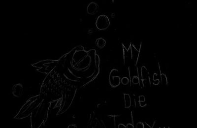 My goldfish...