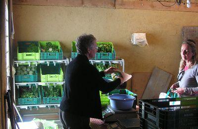 Lettre d'information 08-09 AMAP de la Haute Vallée de l'Adour