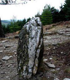 un menhir en quartz dans les Cévennes