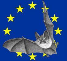 La NSF participe à la 13éme Nuit européenne de la Chauve-Souris