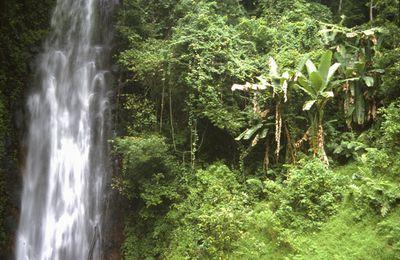 La cachoeira São Nicolau à São Tomé (archipel de São Tomé e Príncipe)