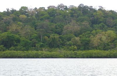 Îles Andaman : part 3