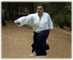 Stage national Iaido-Aikido avec Michel PROUVEZE