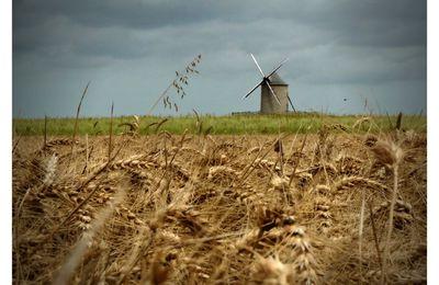 Le moulin gris...