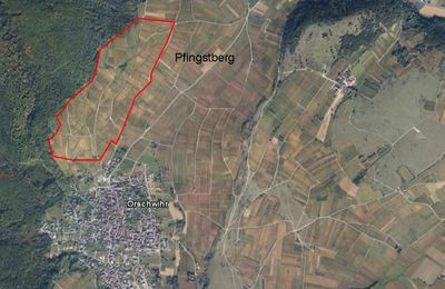 Le grand cru Pfingstberg vu par satellite