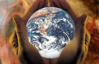 L'humanité consomme 200 espèces par jour