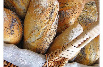 Petits pains complets au levain et aux graines ...
