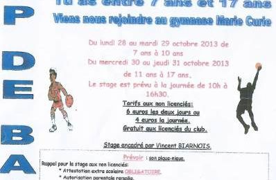 Camp de Basket