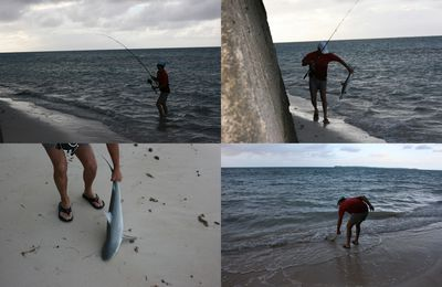 Raivavae : Nico, la pêche, les requins...