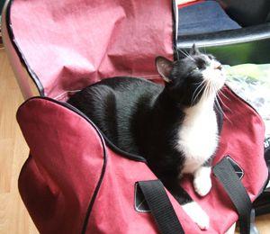 Où poser ma valise?