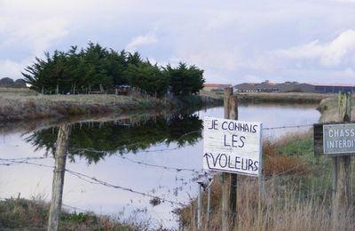 Noirmoutiers : je connais les voleurs...