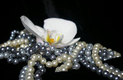 Des bijoux pour habiller vos tenues