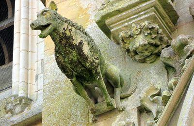 Sculpture animalière, basilique d'Avioth