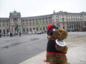 Marmotte à Vienne