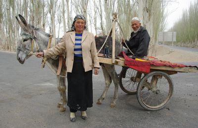 Petit âne au Xinjiang