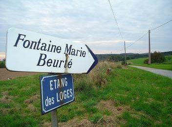 Beurté-Beurte-Lieu-dit proche de Ruaux 88370 Plombières les bains