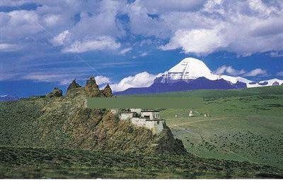 BAIES DE GOJI du plateau tibétain