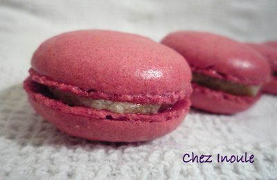 Macarons rhubarbe-gingembre