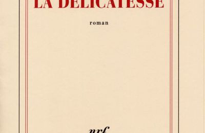 La délicatesse, David FOENKINOS (Gallimard)