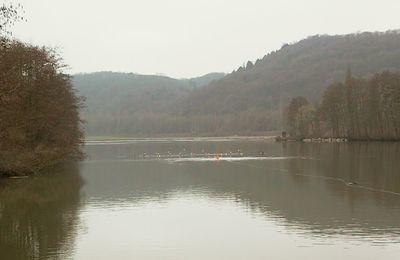 Album - Tir d'essai dans la Meuse