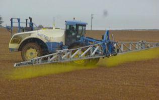 Pesticides à L'Houmeau : où en sommes nous ?