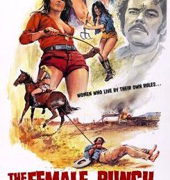 LES AMAZONES DU DESIR (The Female Bunch, Al ADAMSON, 1969)