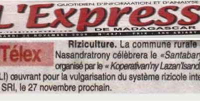 Article, express de Madagascar: Riziculture