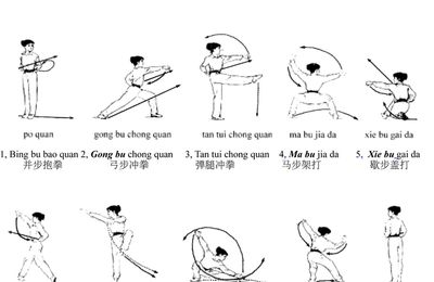 technique de base kung fu
