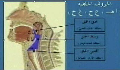 """Les points de sorties des lettres """"El halq"""""""