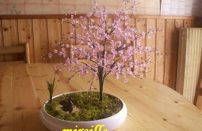 L'abricotier du japon