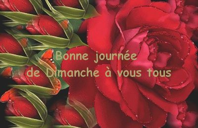 Bon Dimanche les ami(e)s :))