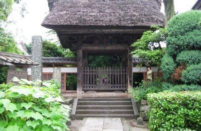 A Kamakura(鎌倉), sous la pluie