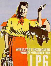 1952-1960, mise en place des coopératives