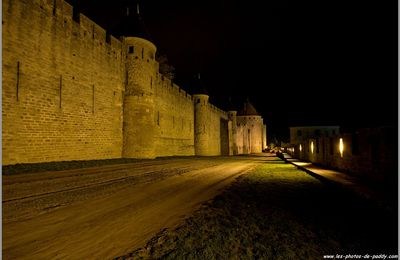 Carcassonne !! la cité !!! (by night) 2
