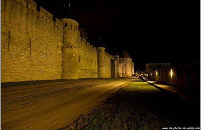Carcassonne !! la cité !!! (by night)(3)