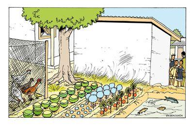 Illustration: Verger-poulailler-pisciculture