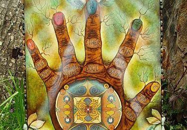 la main de Fatima (2) quelque part dans la Nature