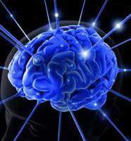Seminaire pour la preservation de notre fonction cérébrale avec l'âge